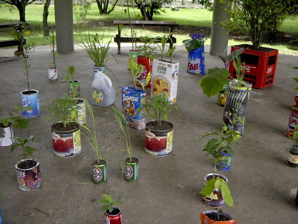 Botanic garden 1.jpg