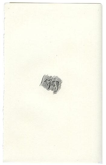 animales71.jpg
