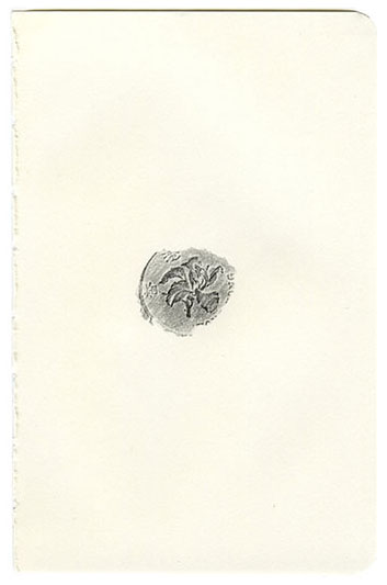 planta5.jpg